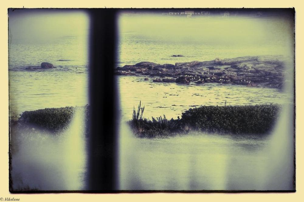 Par la fenêtre 7