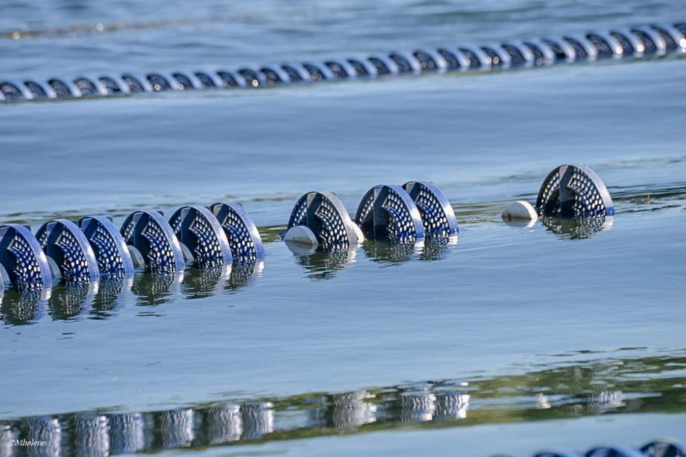 eau flotteur ligne