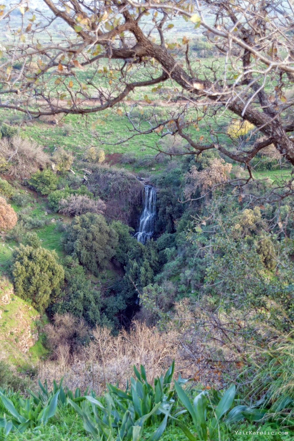 A Distant Waterfall