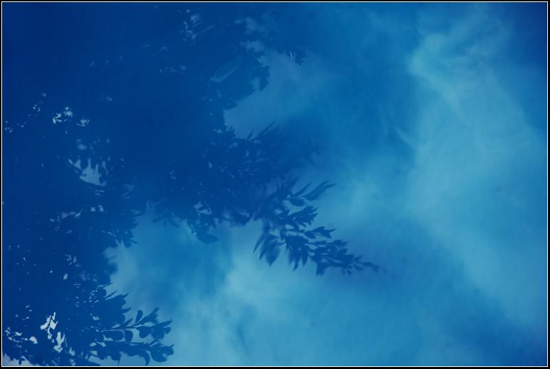 Blue theme iii - Dreaming in blue