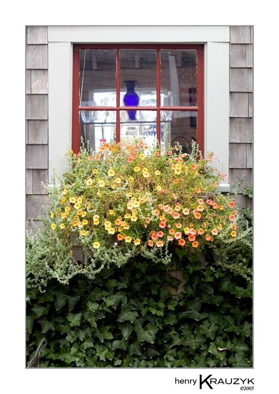 Nantucket Window Box by Henry Krauzyk ©2005
