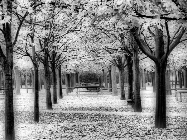 Promenade au Jardin du Luxembourg