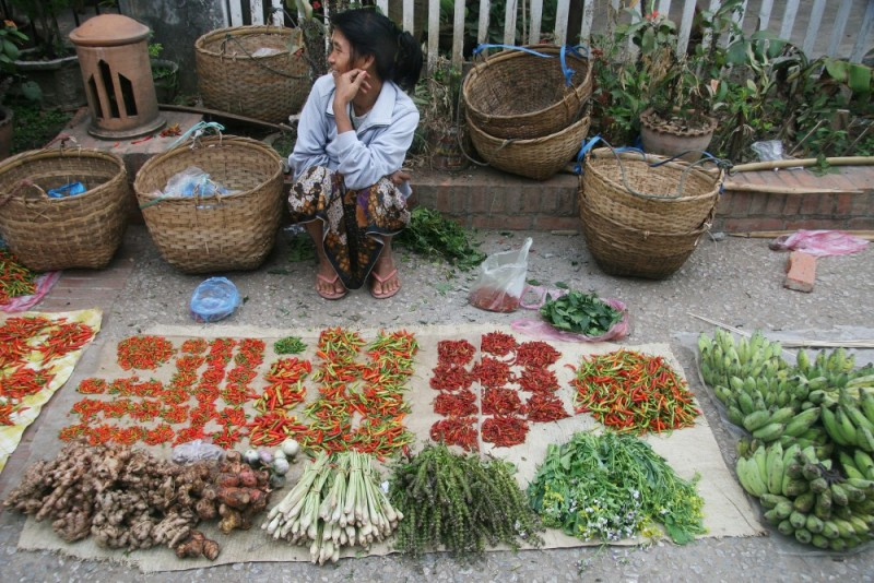 Morning market, Luang Prabang, Laos