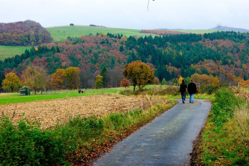 Eifel landscape