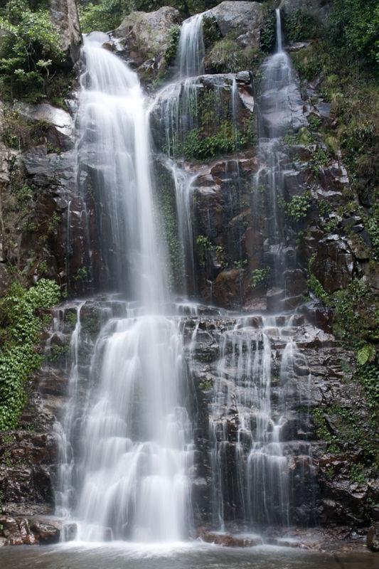 Australia landscape rainforest Minnamurra