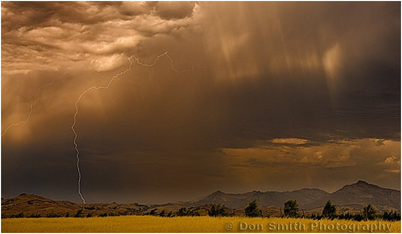 Lightning strike over Diable Range.