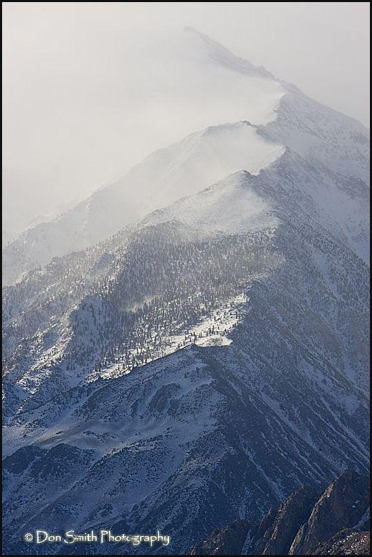 Winter Morning on Mount Tom