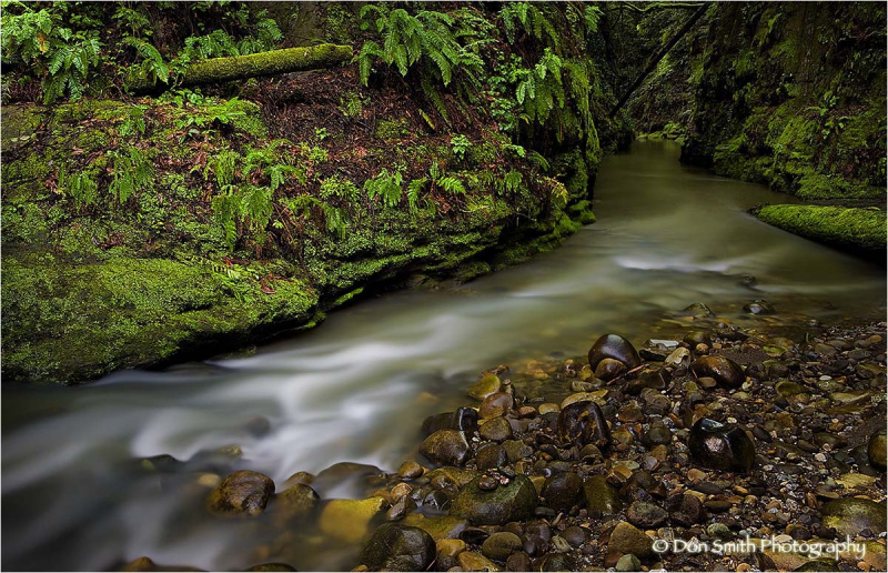 Soquel Creek at Nisene Marks State Park.