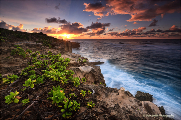Sunrise over lithified cliffs, Kauai.
