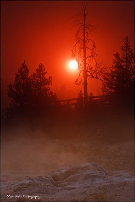 Sunrise through fog with geyser, Yellowstone NP.