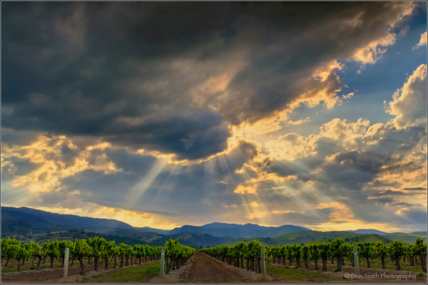 Crepuscular Rays, San Benito County, California