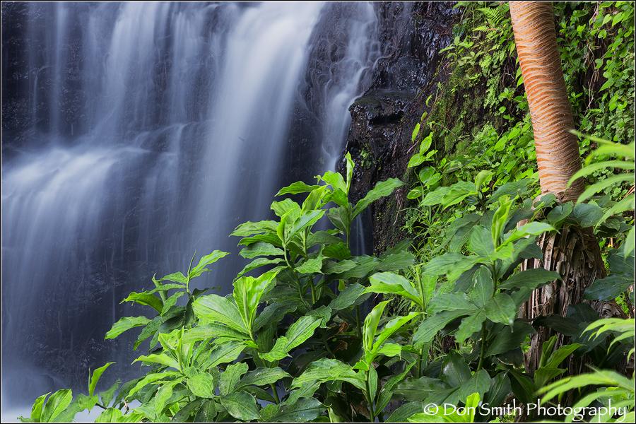 Queens Bath Falls, Kauai