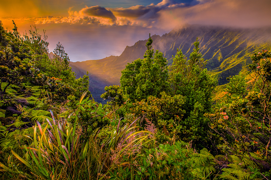 Kauai's Kalalua Valley and Na Pali Cliffs