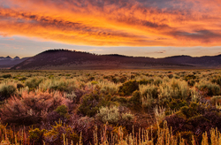 High Desert Glow, Lee Viniing, CA