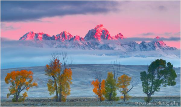 Morning Alpenglow, Grand Teton National Park