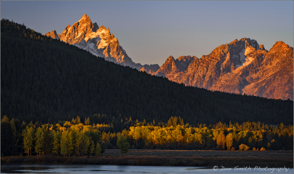 First Light on Tetons and Cottonwoods, Grand Teton