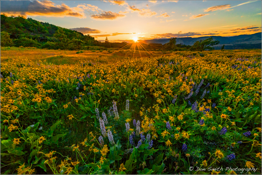 Rowena Crest Sunset, Oregon