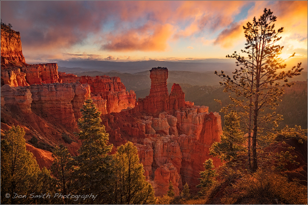 Bryce / Zion Fall Photo Workshop
