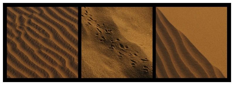 Great Thar Desert