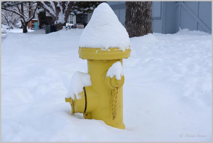 Conehead Fire Hydrant