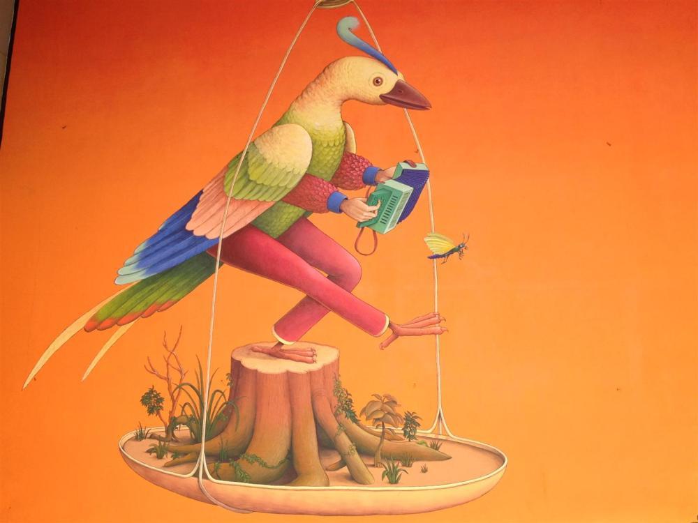 A UNKNOWN BIRD