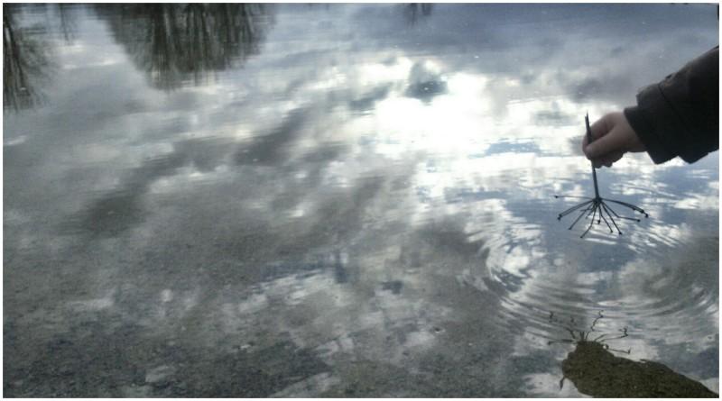 Sky on water