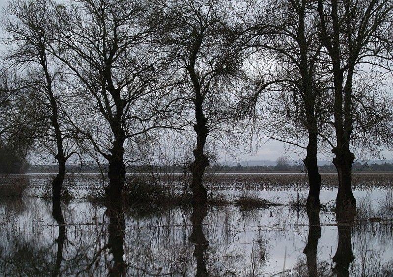 Portugal. Ribatejo. Flood.