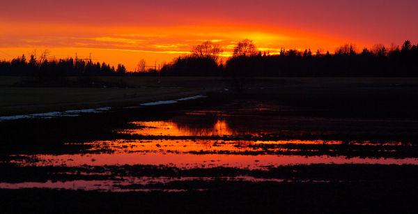 Estonian sunset