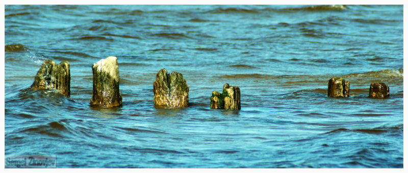 old poles in the sea water