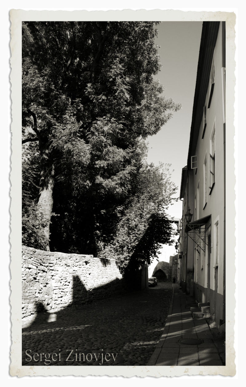 old town in Tallinn in black & white