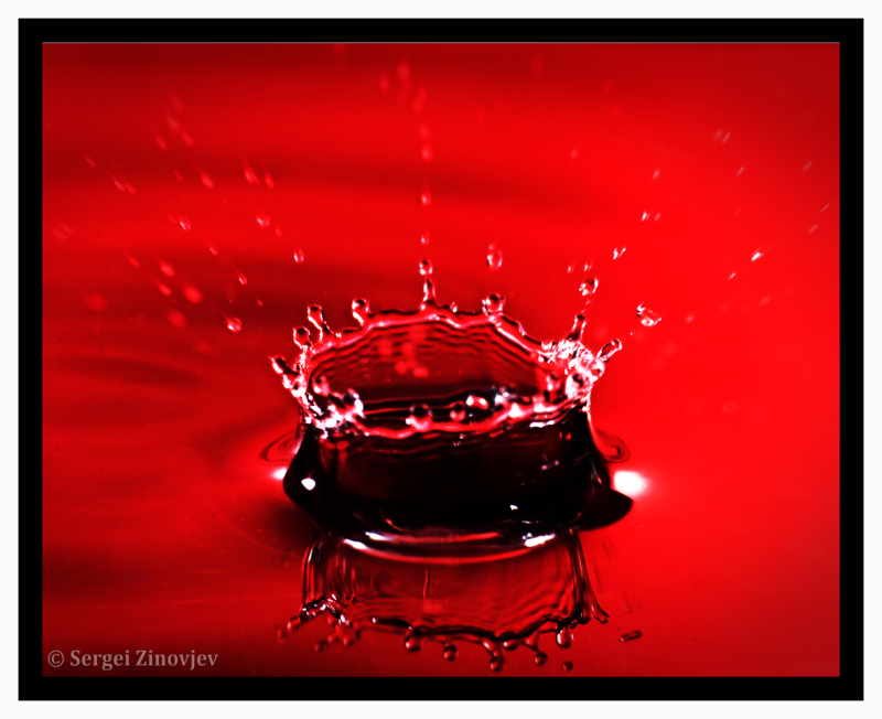 macro shot of water drop