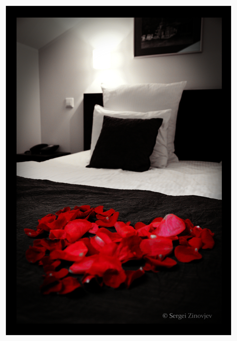 romantic red roses in the bed