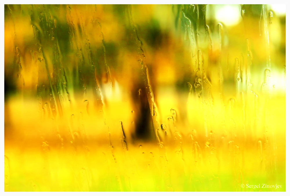 rain on glass with autumn park at background