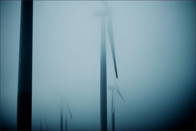 wind mills field