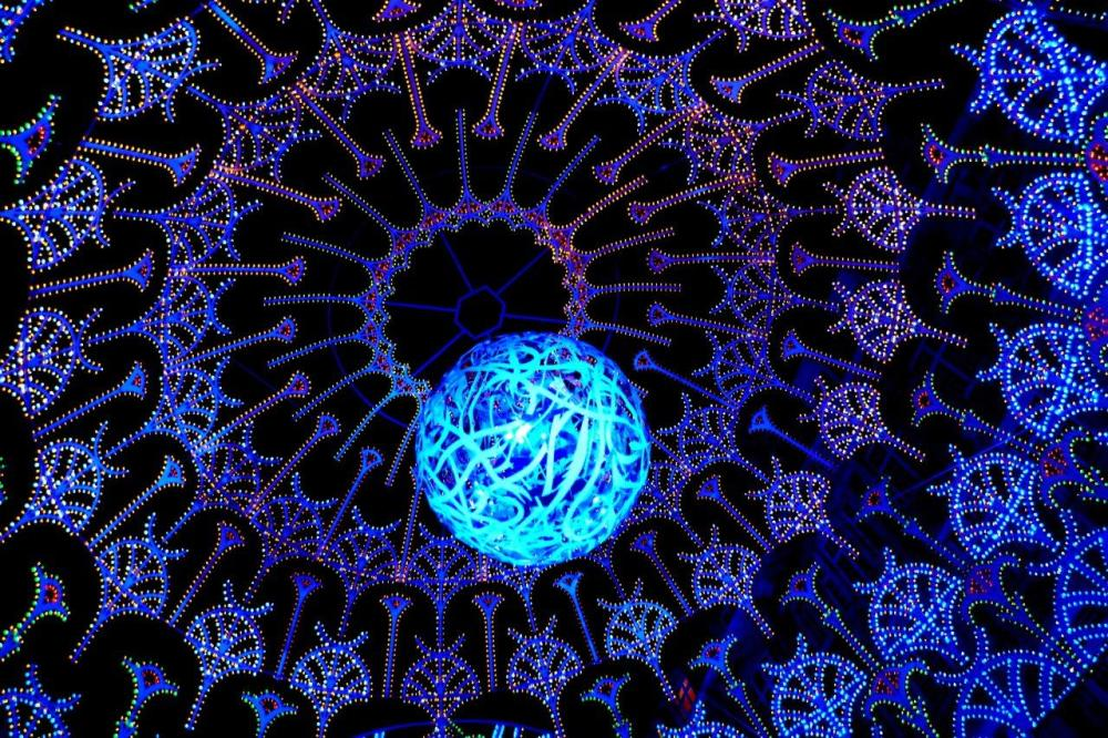 Décorations lilloise Noel 2012