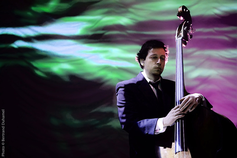 The bassist