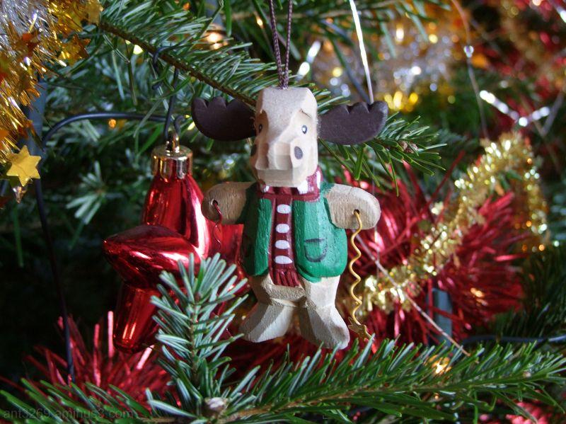 A silly Reindeer !!