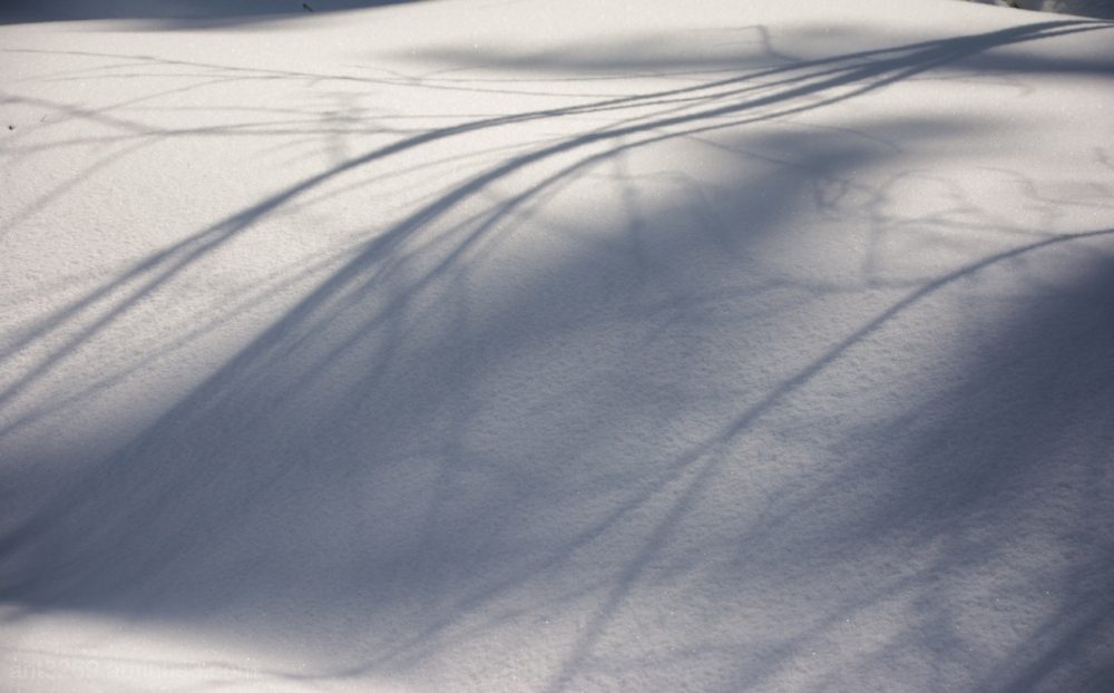 Snow drift and shadows