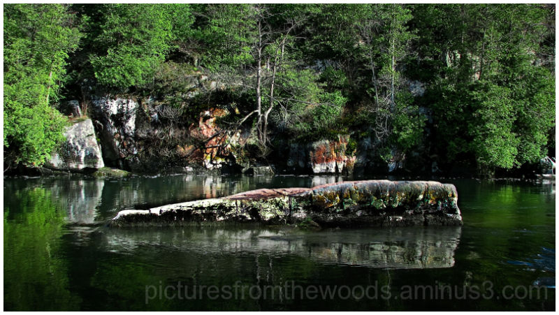 Canadian Shield - Landscape & Rural Photos - Pictures From ...