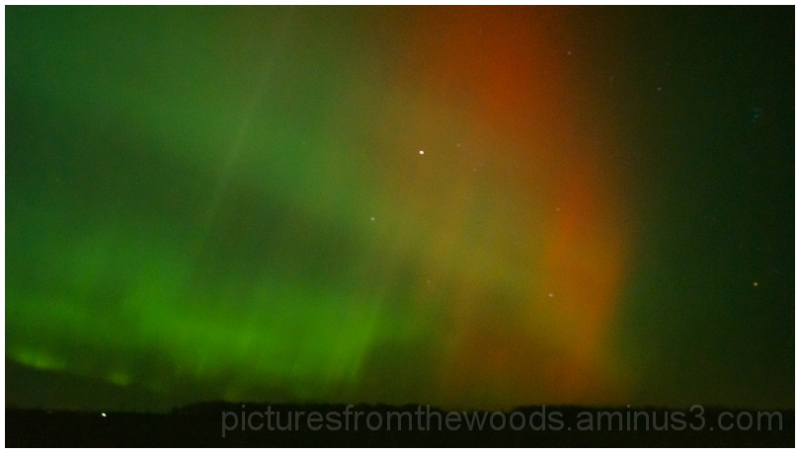 The northern lights in full action