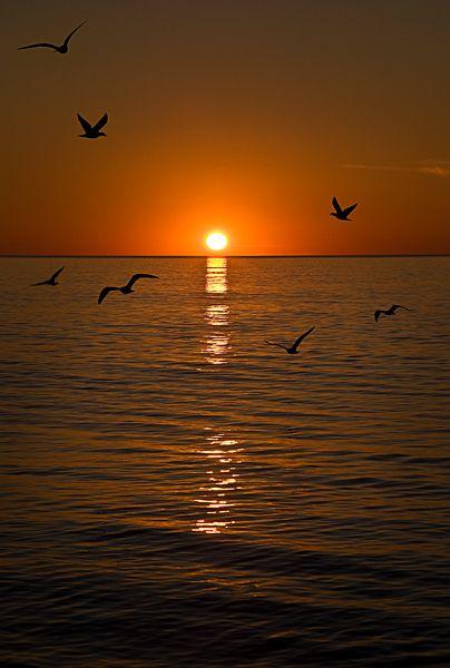 sunset, seascape
