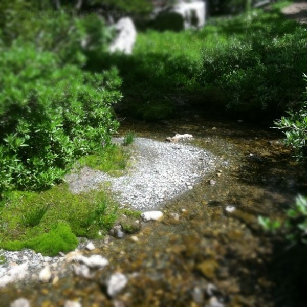 tilt-shift river