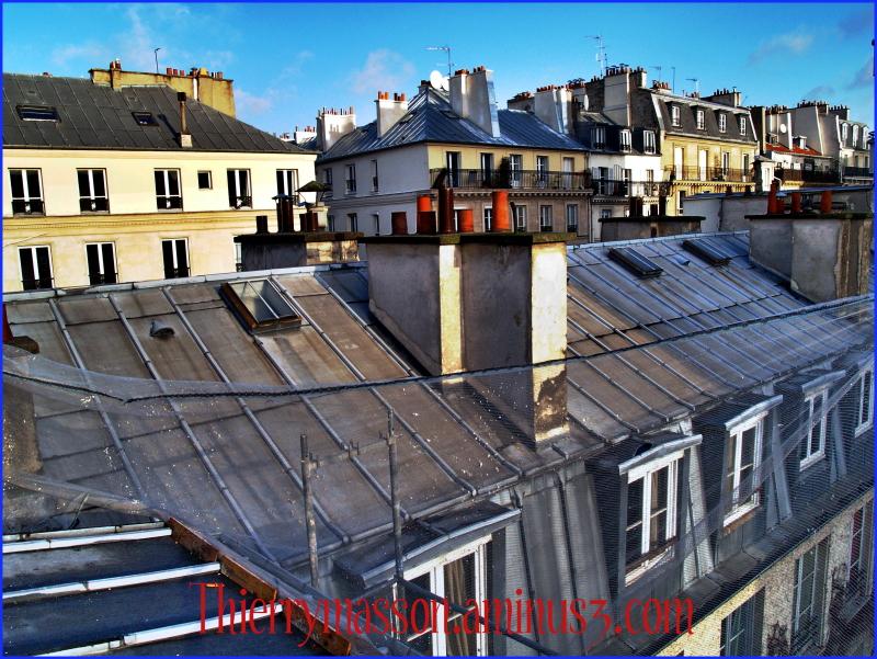 les toits de Paris suite