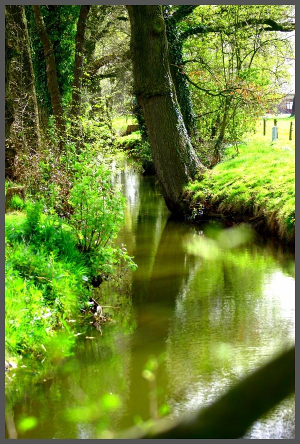 Brook near water mill in Wenum Wiesel, Apeldoorn