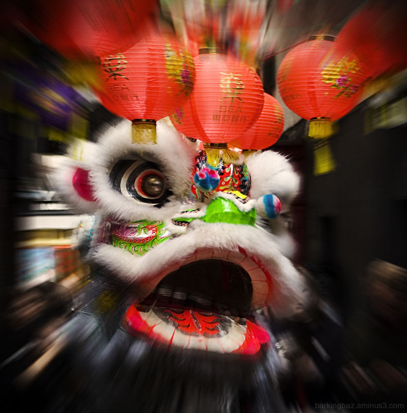 The Year of the Tiger: The Dragon Dance