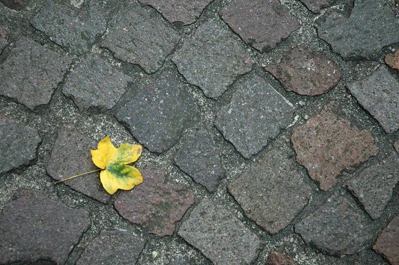 Fall.
