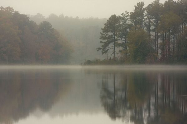 fog at the lake