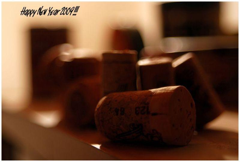 Happy New Year 2009!!!