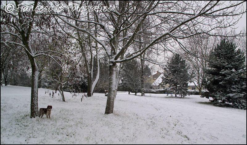 Première neige pour Elsa