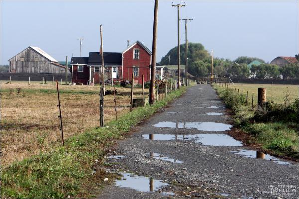 Farm on Cannibal Island Road, Loleta, California